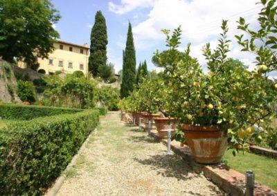 01 Il Borgo -Citroenen in de terrastuin