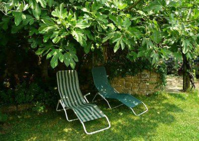 09 Casa Ercole Alda tuin zitje onder vijg