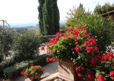 14 Casalsole Lavanda uitzicht terras