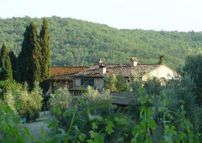 03 Casanova huizen uit wijngaard