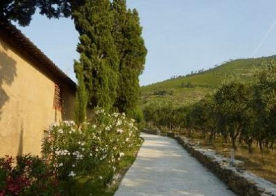 04 Villa Rota het pad naar...