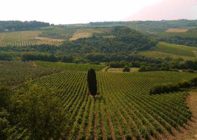 17 Castelvecchio uitzicht fattoria