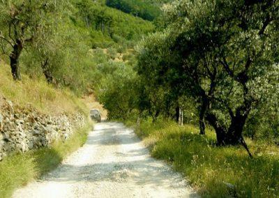 25 Villa Rota laatste stuk weg