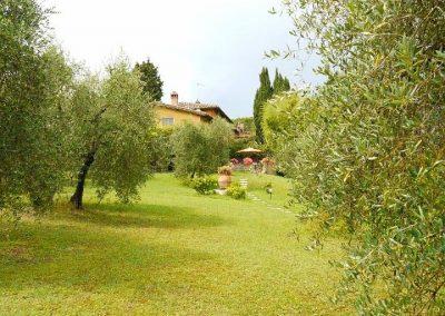05 La Scuola vanuit olijfgaard