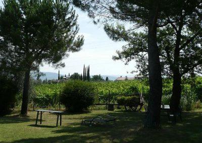 11 Poggio al Chiuso tuin en wijngaard