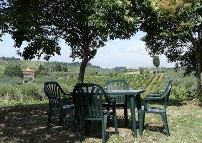 14 Poggio al Chiuso tuin zitje wijngaard