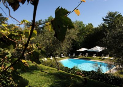 01B. Zwembad vanuit de wijngaard - Villa Nonni