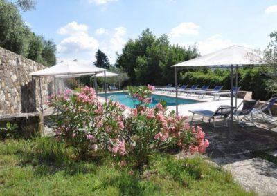 30 Oleander bij zwembad